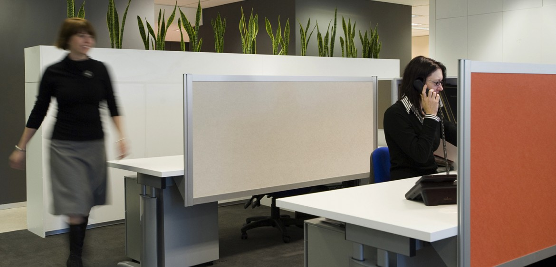 interior design quattrois quattro kylie grimwood moneytree office autralia