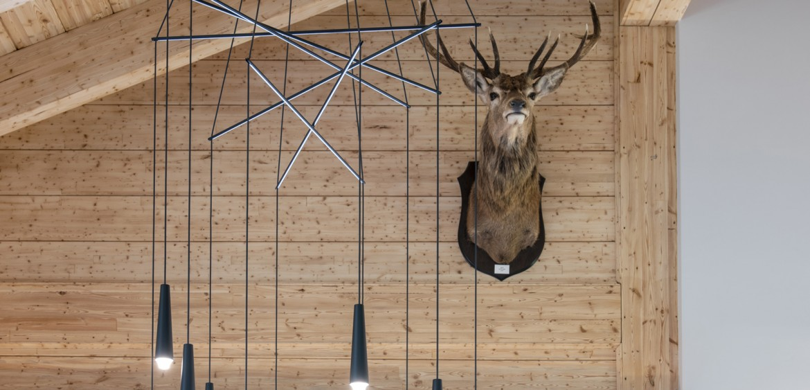 A large stags head mounted on the wall behind the dining area lighting