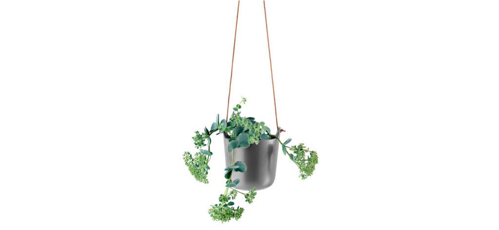 self watering flowerpot hanging basket - plants in interior design
